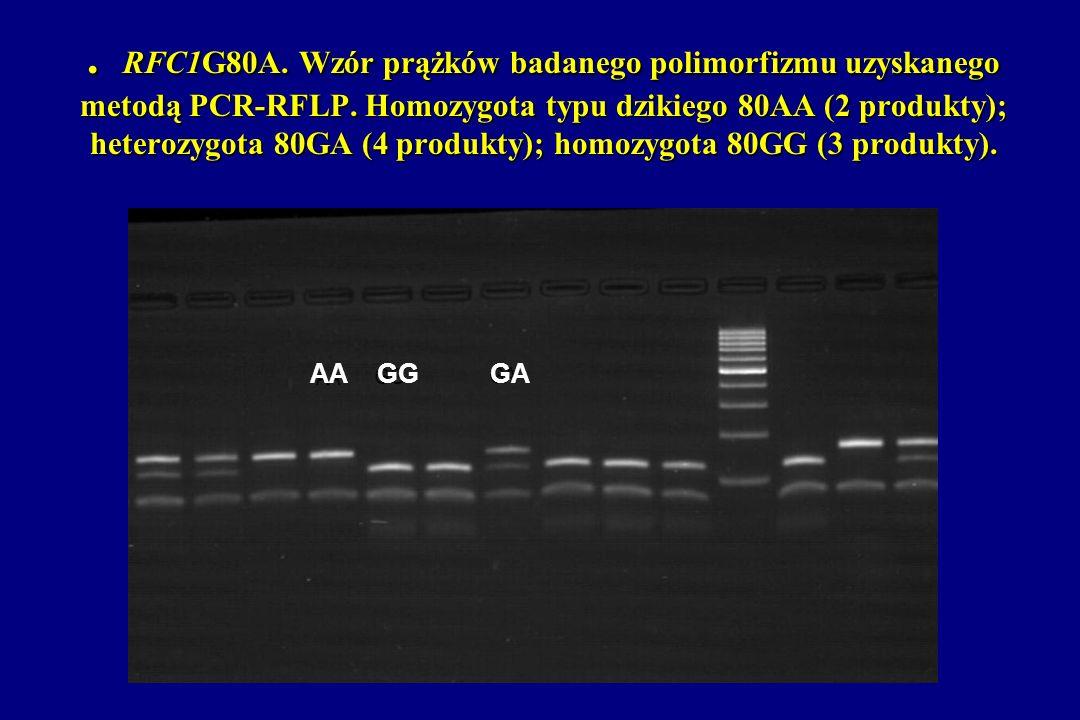 . RFC1G80A. Wzór prążków badanego polimorfizmu uzyskanego metodą PCR-RFLP. Homozygota typu dzikiego 80AA (2 produkty); heterozygota 80GA (4 produkty);