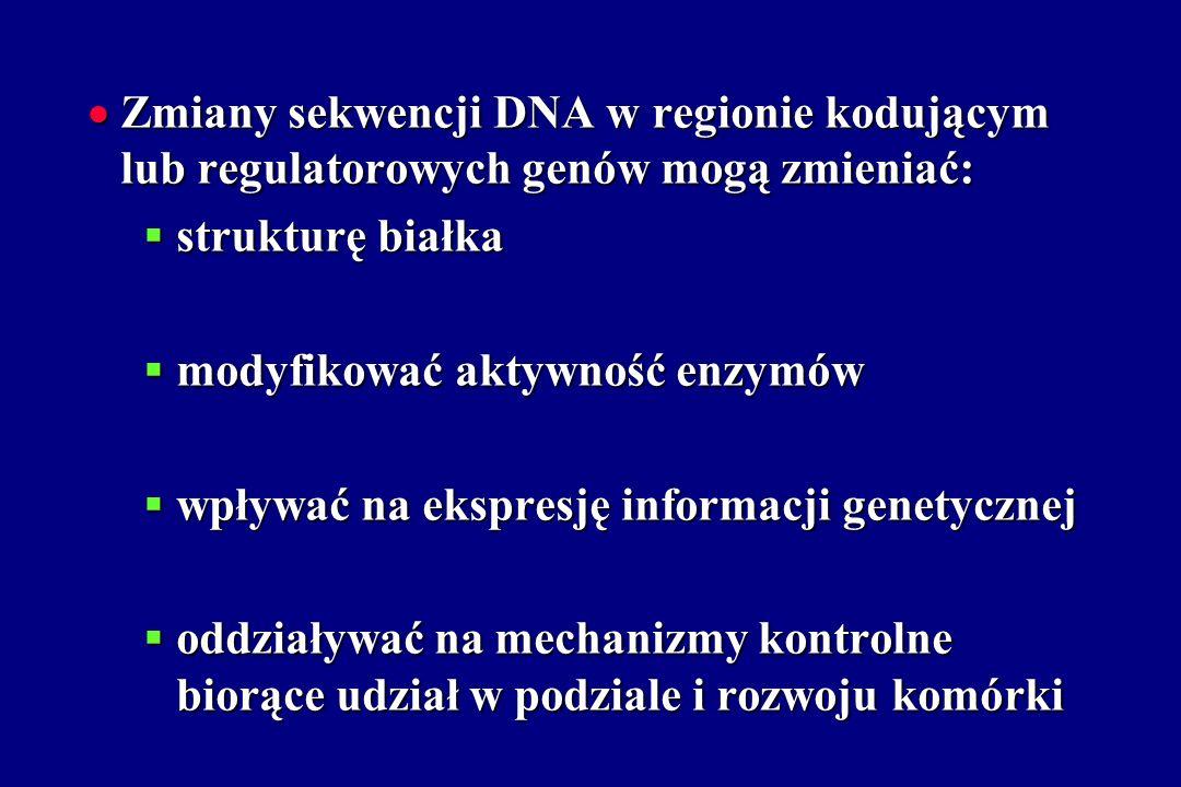 Zmiany sekwencji DNA w regionie kodującym lub regulatorowych genów mogą zmieniać: Zmiany sekwencji DNA w regionie kodującym lub regulatorowych genów m