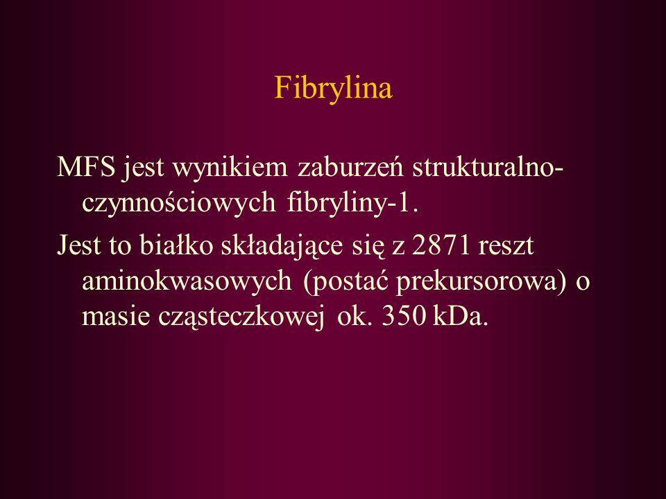 Fibrylina MFS jest wynikiem zaburzeń strukturalno- czynnościowych fibryliny-1. Jest to białko składające się z 2871 reszt aminokwasowych (postać preku