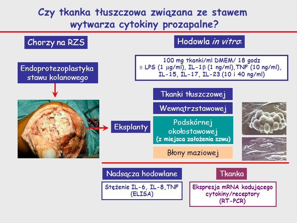 Chorzy na RZS Endoprotezoplastyka stawu kolanowego Eksplanty Tkanki tłuszczowej Błony maziowej Wewnątrzstawowej Podskórnej okołostawowej (z miejsca za
