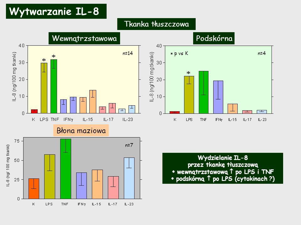 Wytwarzanie IL-8 przez tkanki pochodzące od tych samych pacjentów Tkanka tłuszczowa n=7 n=3 K LPS TNF IFN IL-15 IL-17 IL-23 K LPS TNF IL-1 IFN IL-15 IL-17 IL-23 K LPS TNF IFN IL-15 IL-17 IL-23 WewnątrzstawowaBłona maziowa Wewnątrzstawowa K LPS TNF IL-1 IFN IL-15 IL-17 IL-23 Podskórna p Ts vs Bm p vs K Obie tkanki tłuszczowe wydzielają spontanicznie i po stymulacji podobnie ilości IL-8