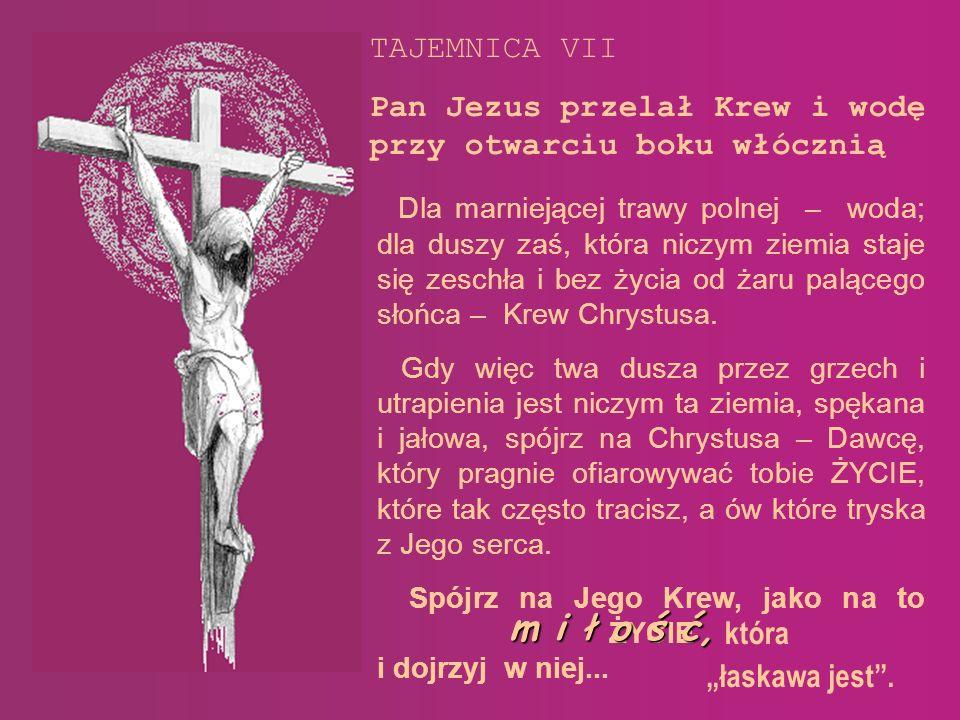 Niech to nowe spojrzenie na Tajemnicę Miłości płynącej we Krwi Chrystusa, a wyrażające się w tych słowach, rysunkach będzie podzięką za wszelkie dobro Bogu, a także ludzią których spotkałem na swej drodze: ks.