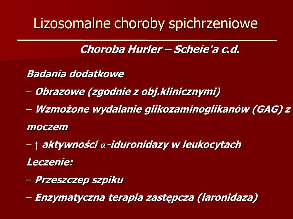 Lizosomalne choroby spichrzeniowe Choroba Hurler – Scheie'a c.d. Badania dodatkowe – Obrazowe (zgodnie z obj.klinicznymi) – Wzmożone wydalanie glikoza