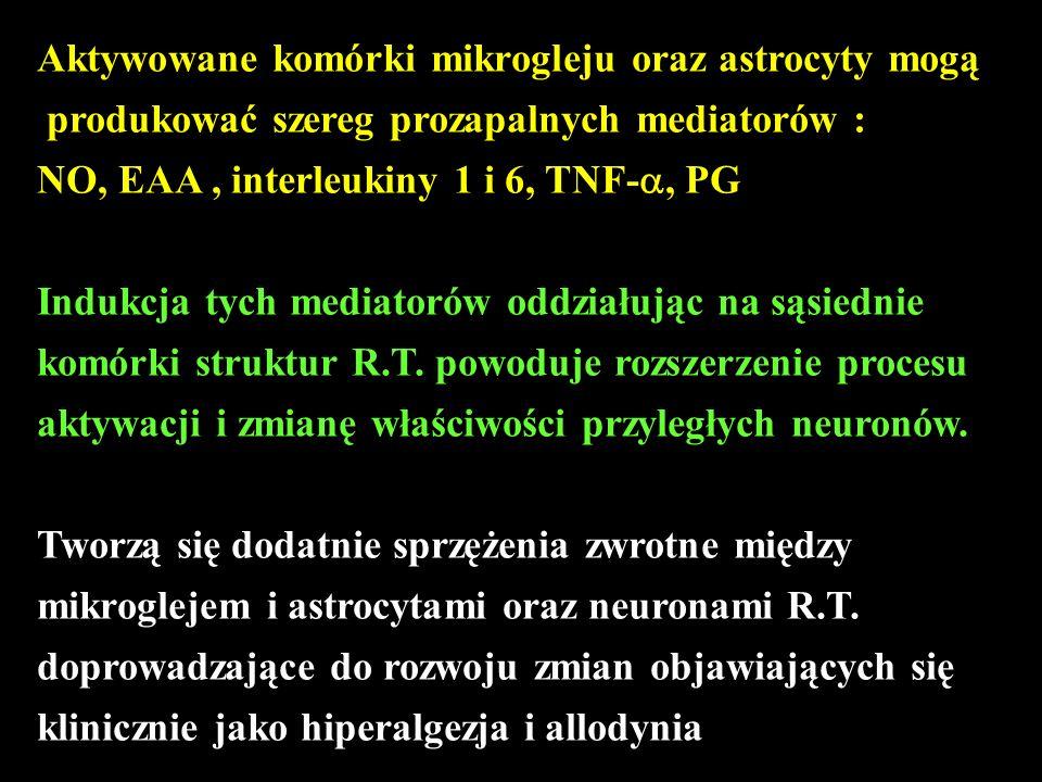 Aktywowane komórki mikrogleju oraz astrocyty mogą produkować szereg prozapalnych mediatorów : NO, EAA, interleukiny 1 i 6, TNF-, PG Indukcja tych medi