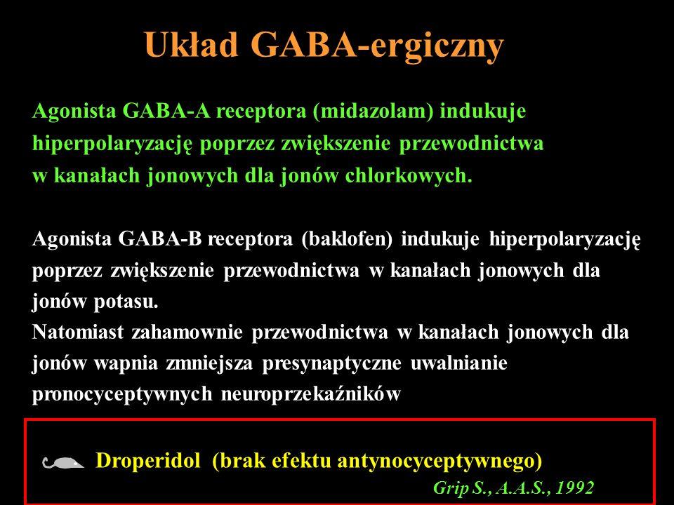 Układ GABA-ergiczny Agonista GABA-A receptora (midazolam) indukuje hiperpolaryzację poprzez zwiększenie przewodnictwa w kanałach jonowych dla jonów ch
