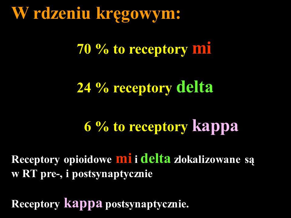 W rdzeniu kręgowym: 70 % to receptory mi 24 % receptory delta 6 % to receptory kappa Receptory opioidowe mi i delta zlokalizowane są w RT pre-, i post