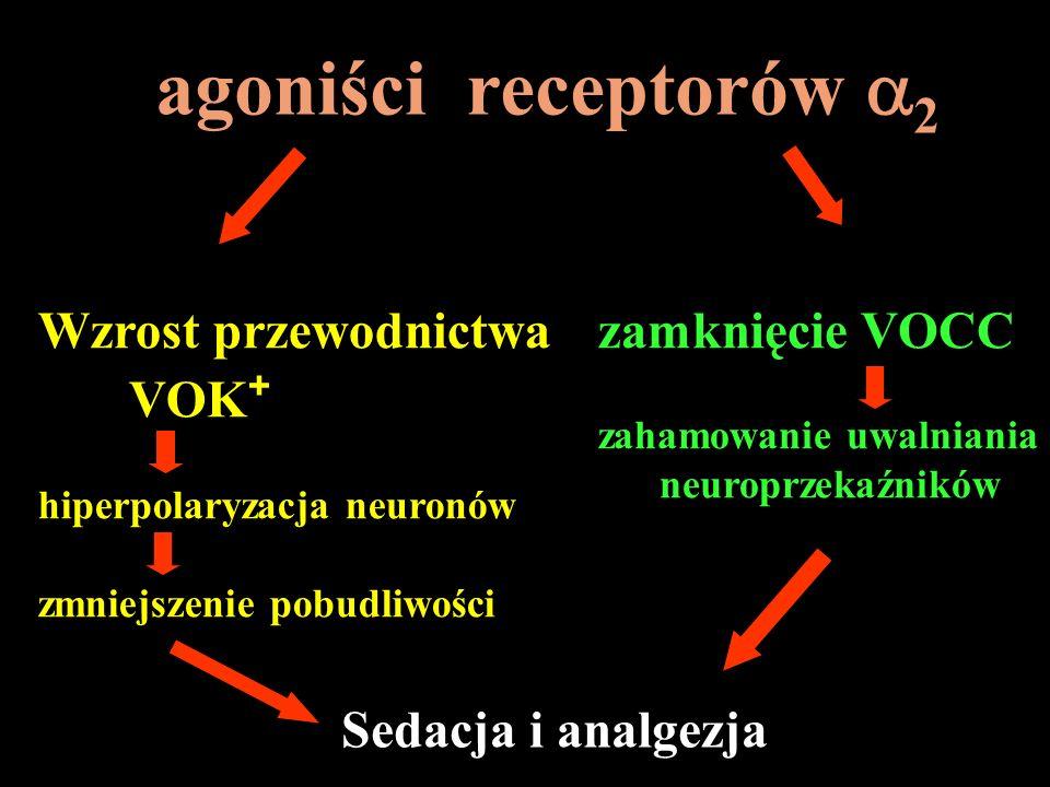 agoniści receptorów 2 Wzrost przewodnictwa VOK + hiperpolaryzacja neuronów zmniejszenie pobudliwości zamknięcie VOCC zahamowanie uwalniania neuroprzek