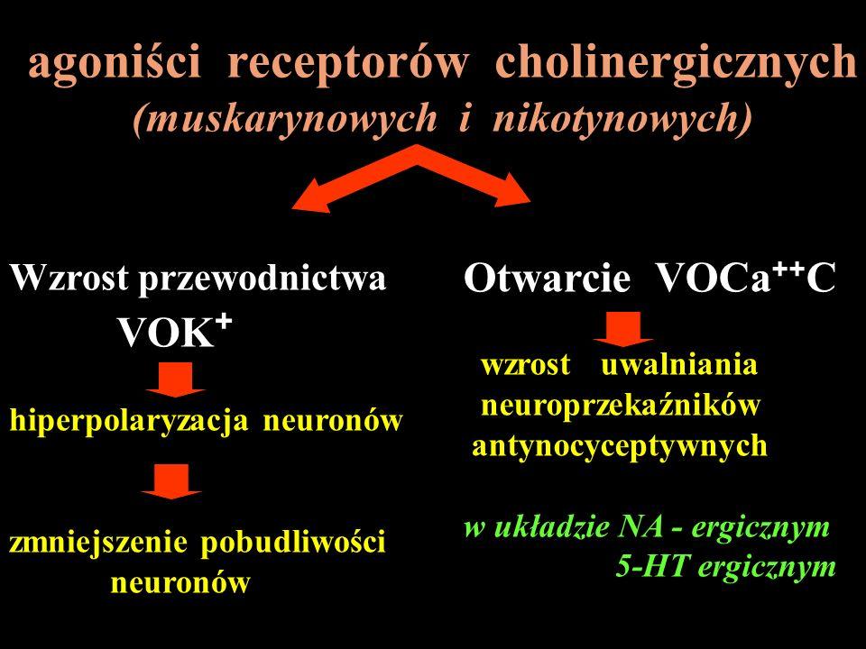 agoniści receptorów cholinergicznych (muskarynowych i nikotynowych) Wzrost przewodnictwa VOK + hiperpolaryzacja neuronów zmniejszenie pobudliwości neu