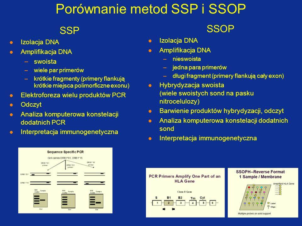 Błędne typowanie pacjenta Pacjent S.T.Wykryto błąd typowania w dwóch loci (A, DRB1).