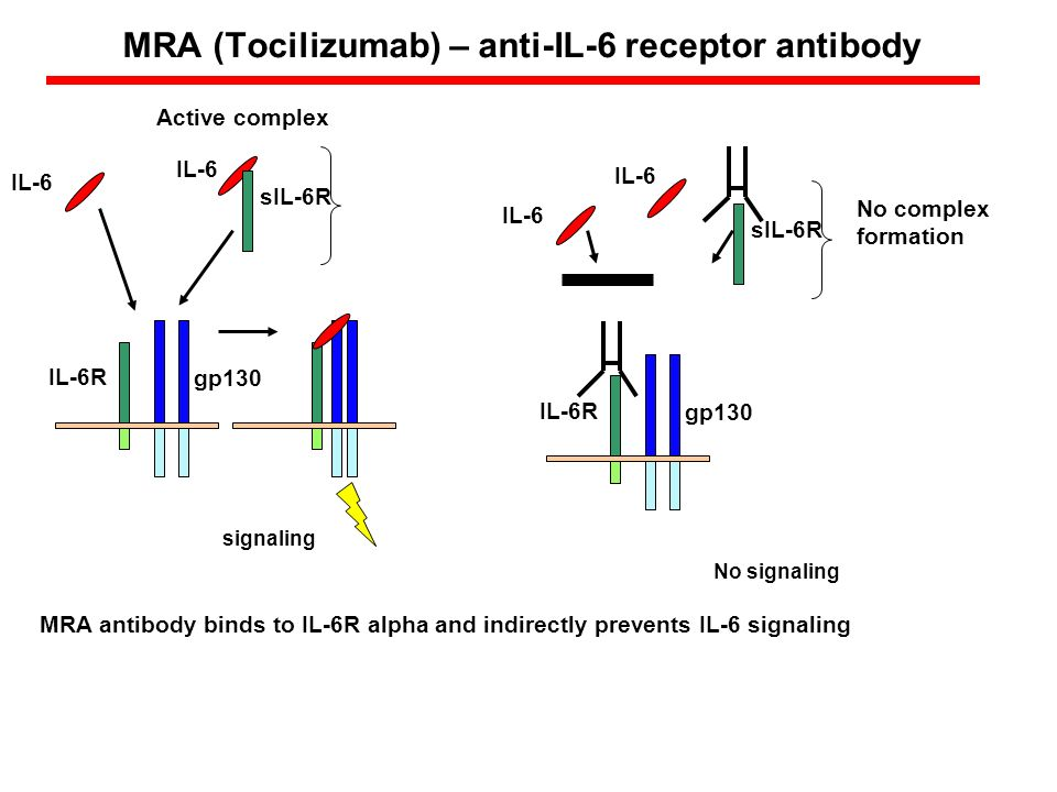 MRA (Tocilizumab) – anti-IL-6 receptor antibody MRA antibody binds to IL-6R alpha and indirectly prevents IL-6 signaling IL-6R gp130 sIL-6R signaling