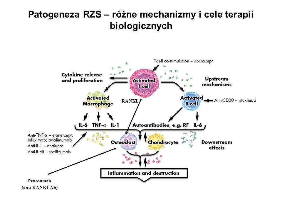 Patogeneza RZS – różne mechanizmy i cele terapii biologicznych RANKL Denosumab (anti RANKL Ab)