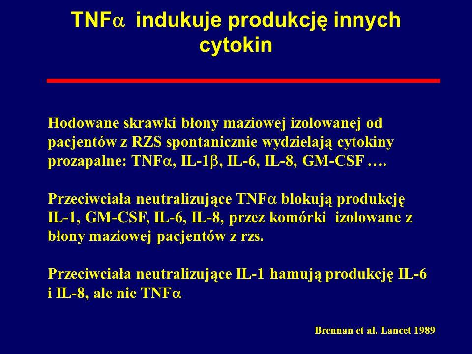TNF indukuje produkcję innych cytokin Brennan et al. Lancet 1989 Hodowane skrawki błony maziowej izolowanej od pacjentów z RZS spontanicznie wydzielaj
