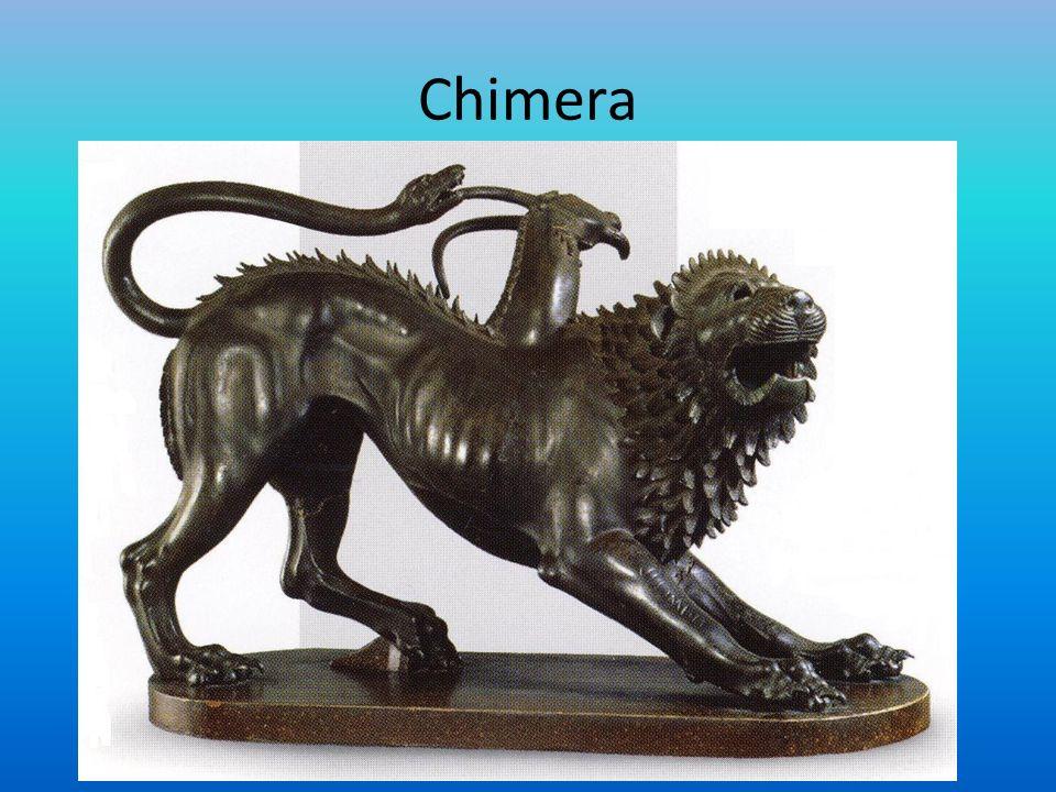 Chimera – w mitologii greckiej zwierzę łączące w sobie cechy kozy i lwa Mikrochimeryzm to zjawisko współistnienia w jednym organizmie dwóch odmiennych genetycznie komórek, z których jedna występuje w bardzo niskiej liczbie.