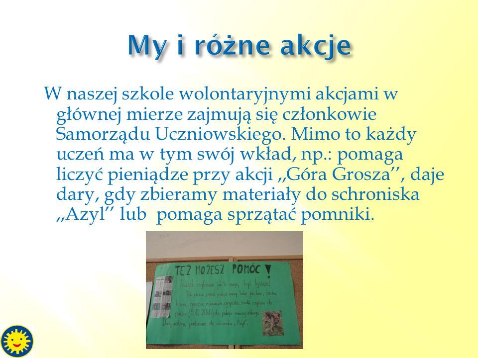 W naszej szkole wolontaryjnymi akcjami w głównej mierze zajmują się członkowie Samorządu Uczniowskiego. Mimo to każdy uczeń ma w tym swój wkład, np.: