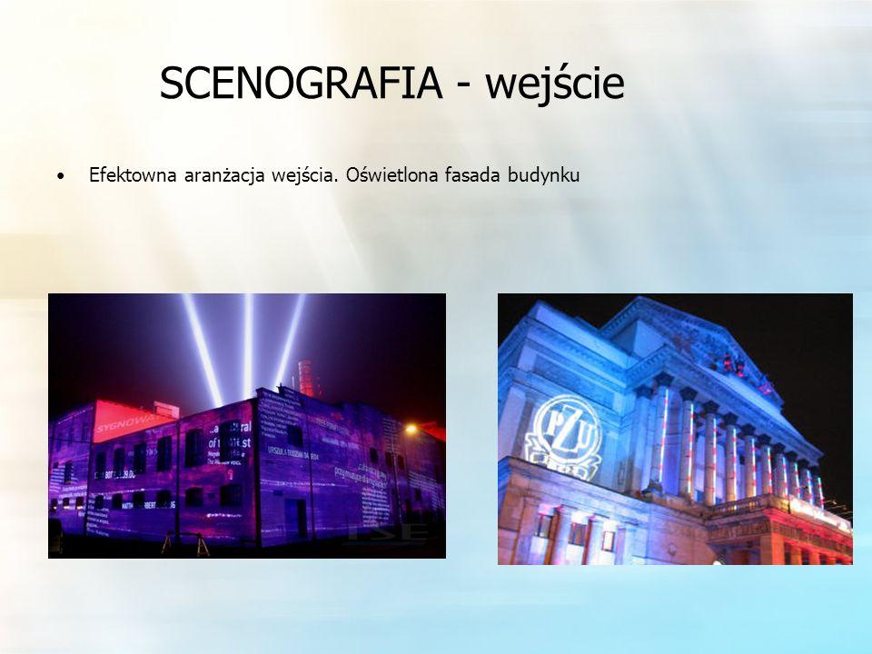 SCENOGRAFIA - wejście Efektowna aranżacja wejścia. Oświetlona fasada budynku