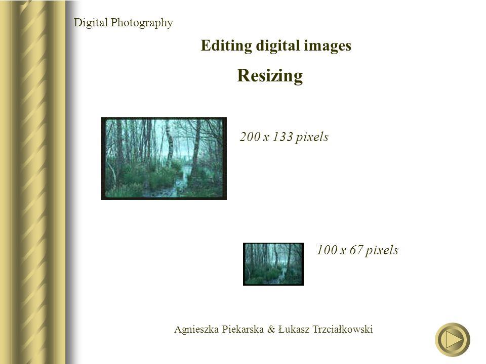 Agnieszka Piekarska & Łukasz Trzciałkowski Digital Photography Editing digital images Resizing 200 x 133 pixels 100 x 67 pixels