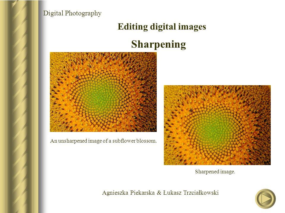 Agnieszka Piekarska & Łukasz Trzciałkowski Digital Photography Editing digital images Sharpening An unsharpened image of a subflower blossom.