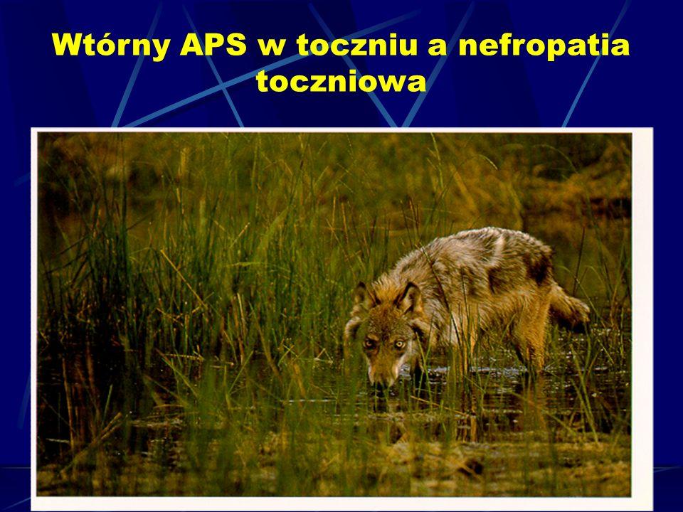 Wtórny APS w toczniu a nefropatia toczniowa