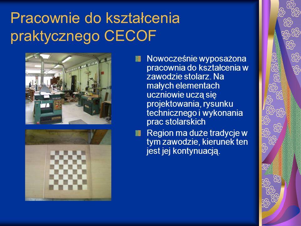 Pracownie do kształcenia praktycznego CECOF Nowocześnie wyposażona pracownia do kształcenia w zawodzie stolarz. Na małych elementach uczniowie uczą si