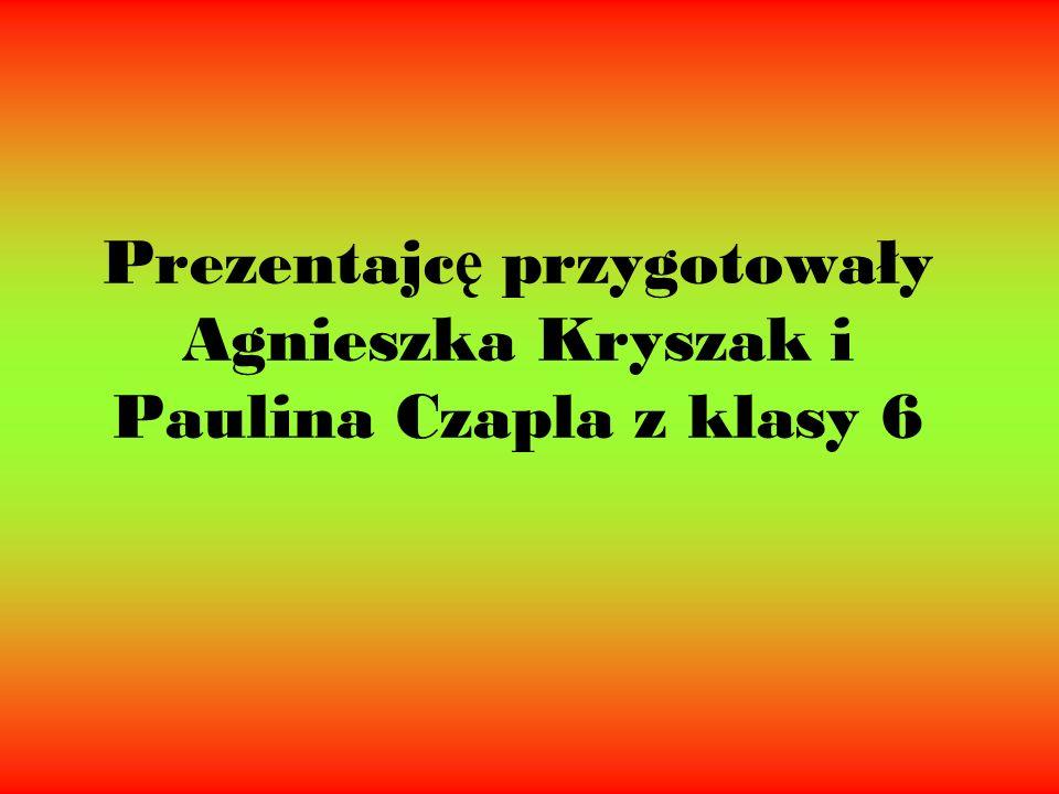 Prezentajc ę przygotowały Agnieszka Kryszak i Paulina Czapla z klasy 6