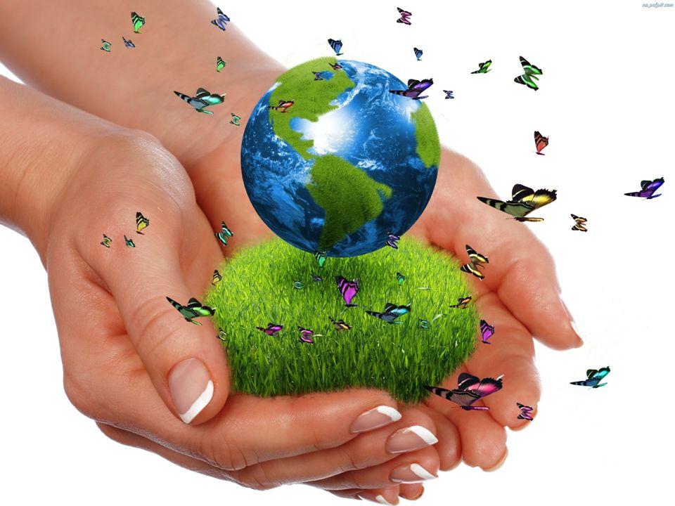 Podczas minionych 40 lat Dzień Ziemi zyskał 17 000 partnerów i organizacji, którzy efektywnie włączyli się w ochronę środowiska, obchodzony jest w 192 krajach.