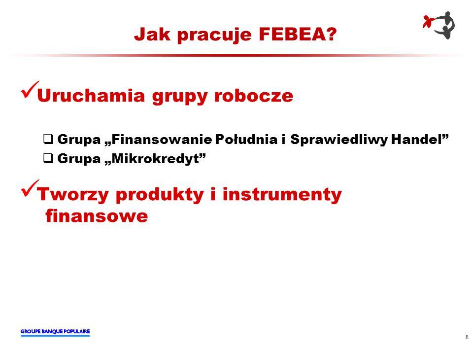 Jak pracuje FEBEA? Uruchamia grupy robocze Grupa Finansowanie Południa i Sprawiedliwy Handel Grupa Mikrokredyt Tworzy produkty i instrumenty finansowe