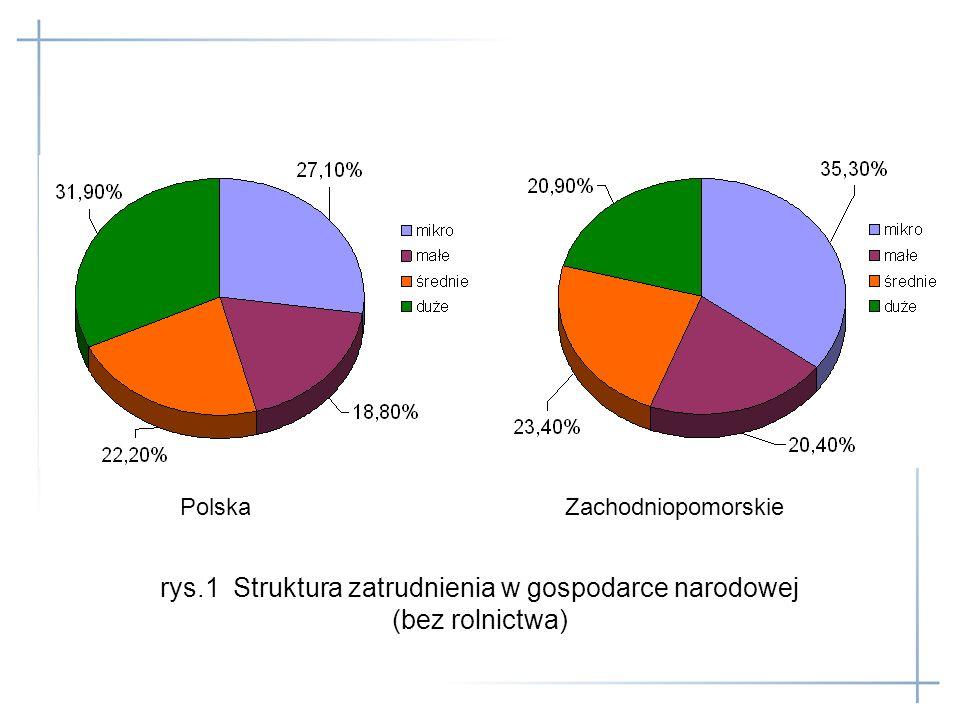 rys.1 Struktura zatrudnienia w gospodarce narodowej (bez rolnictwa) Polska Zachodniopomorskie