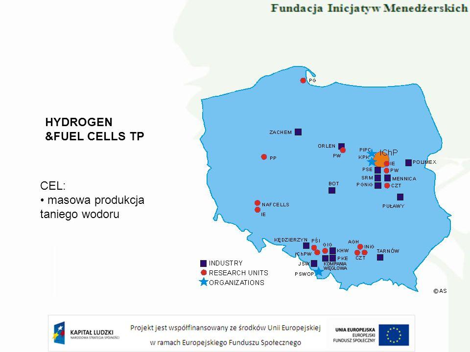 HYDROGEN &FUEL CELLS TP CEL: masowa produkcja taniego wodoru