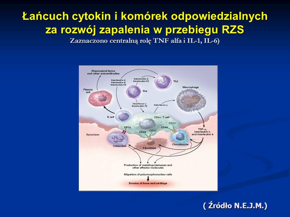 Łańcuch cytokin i komórek odpowiedzialnych za rozwój zapalenia w przebiegu RZS Zaznaczono centralną rolę TNF alfa i IL-1, IL-6) ( Źródło N.E.J.M.)
