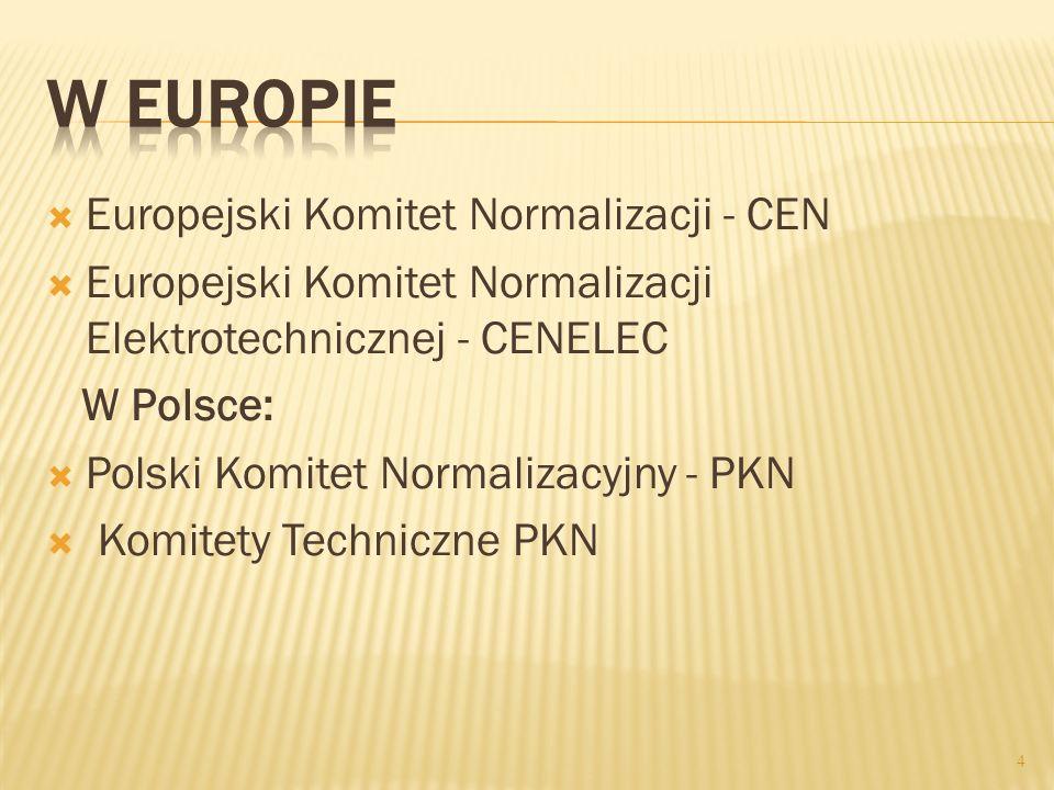 Europejski Komitet Normalizacji - CEN Europejski Komitet Normalizacji Elektrotechnicznej - CENELEC W Polsce: Polski Komitet Normalizacyjny - PKN Komit