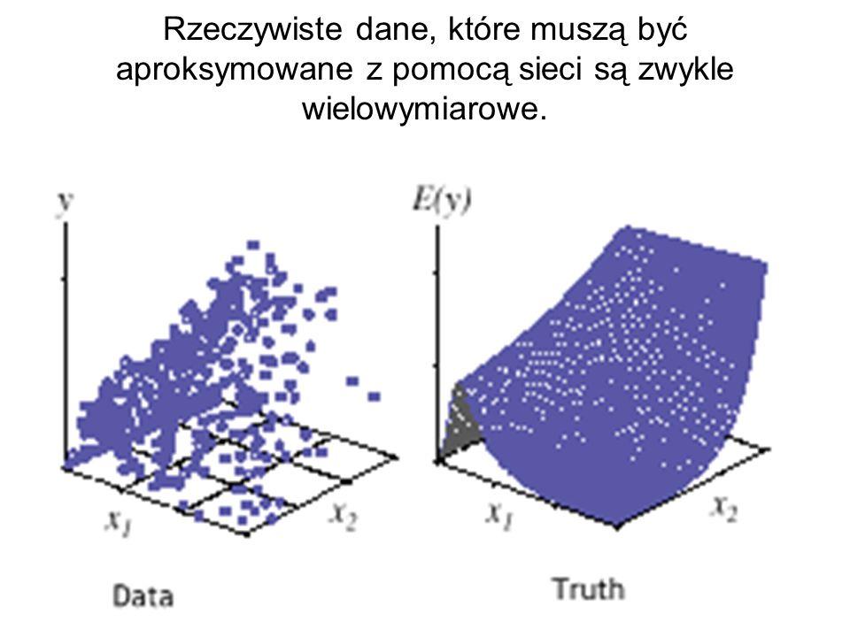 Rzeczywiste dane, które muszą być aproksymowane z pomocą sieci są zwykle wielowymiarowe.
