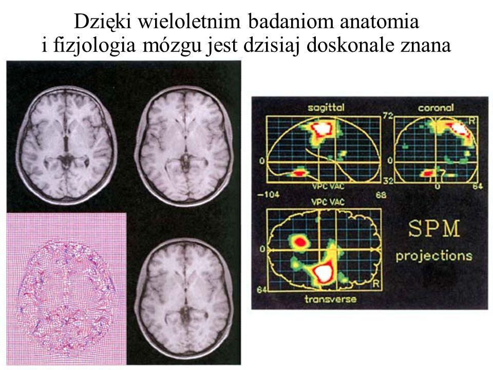 1904 - Pavlov I.P. - teoria odruchów warunkowych 1906 - Golgi C., - badanie struktury układu nerwowego 1906 - Ramón Y Cajal S. - odkrycie, że mózg skł
