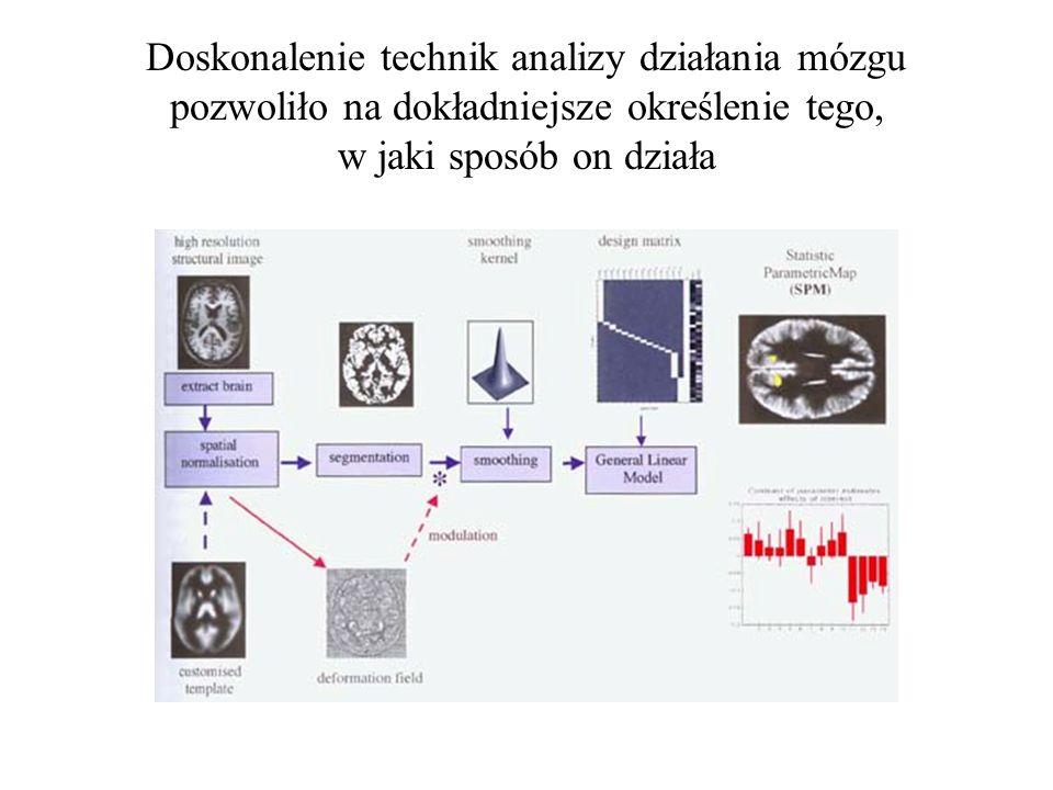 Towarzyszyły temu mniej lub bardziej uzasadnione spekulacje na temat zadań, jakie pełnia poszczególne struktury mózgowe