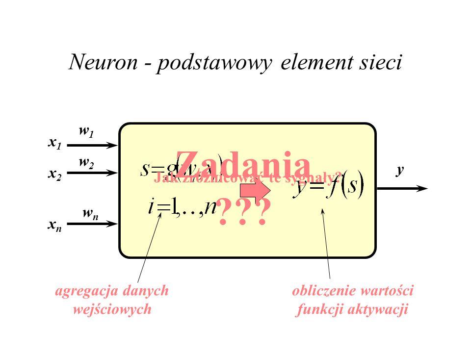 Najciekawsze procesy toczą się na złączach pomiędzy neuronami