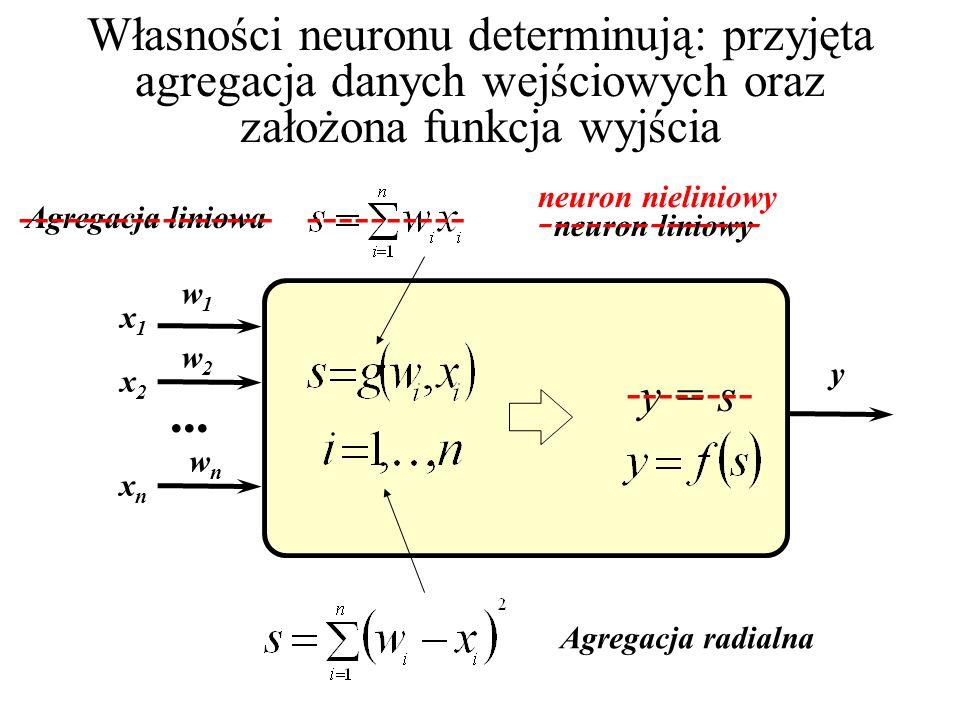 Pojęcie wagi synaptycznej jest w sztucznym neuronie bardzo uproszczone, podczas gdy w rzeczywistych komórkach odpowiada mu dosyć skomplikowana struktu