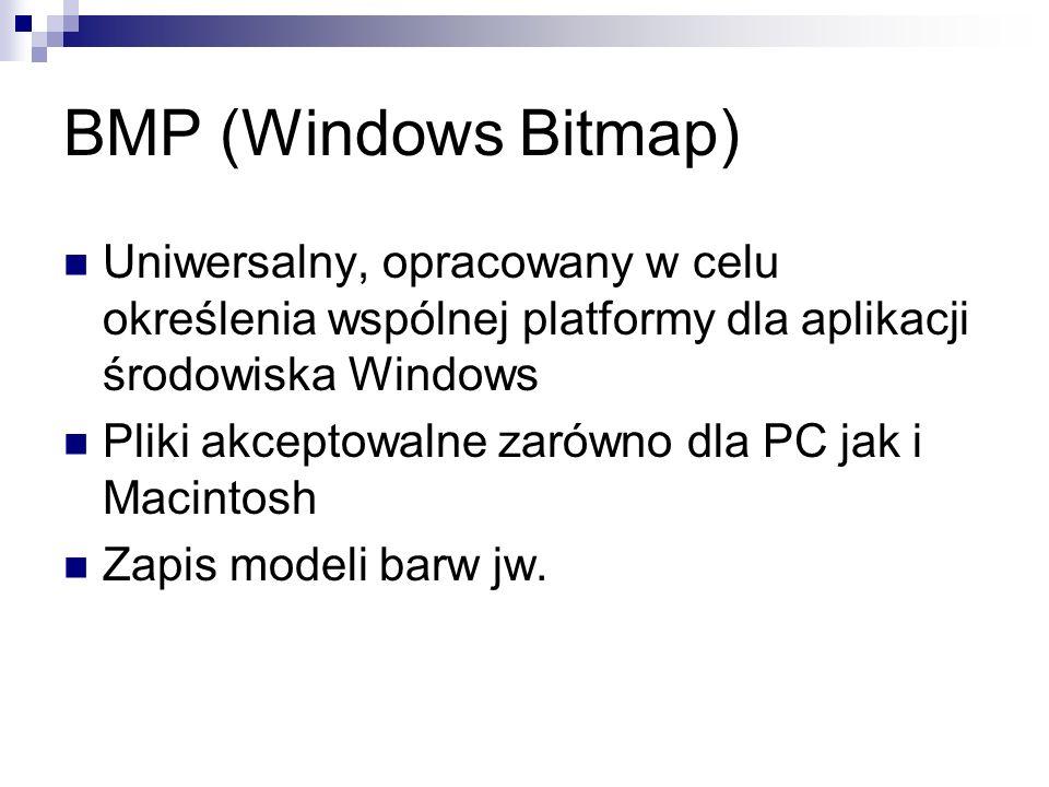 BMP (Windows Bitmap) Uniwersalny, opracowany w celu określenia wspólnej platformy dla aplikacji środowiska Windows Pliki akceptowalne zarówno dla PC j