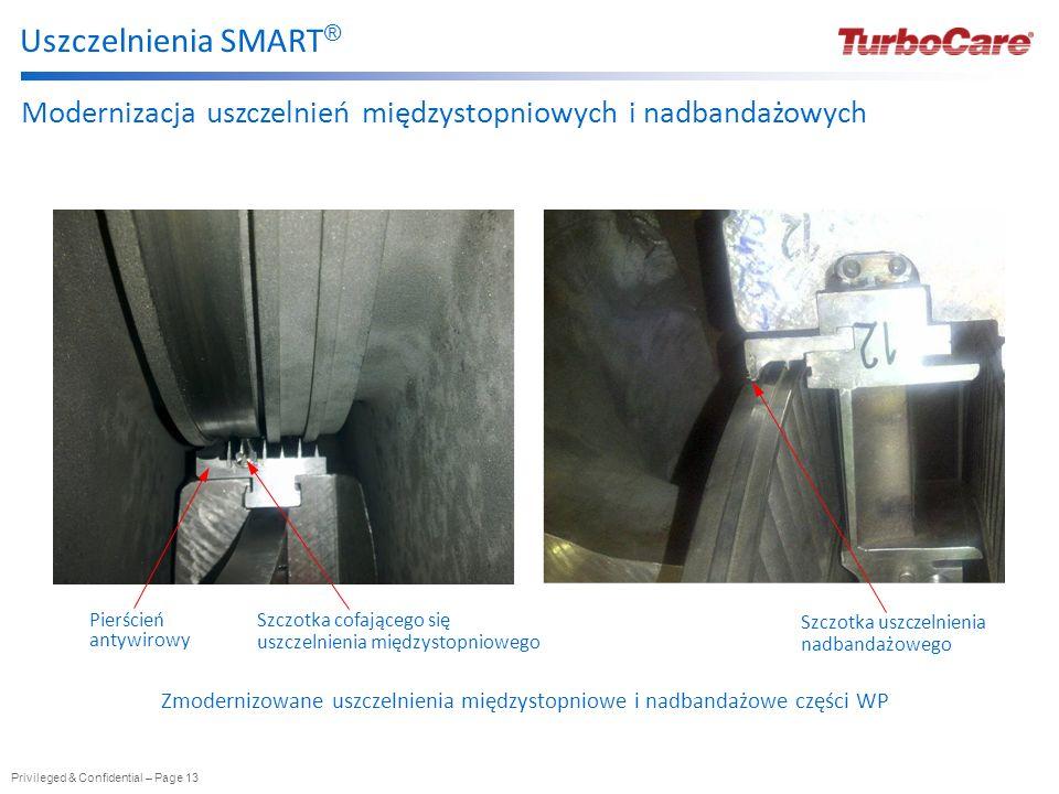 Privileged & Confidential – Page 13 Uszczelnienia SMART ® Szczotka uszczelnienia nadbandażowego Szczotka cofającego się uszczelnienia międzystopnioweg