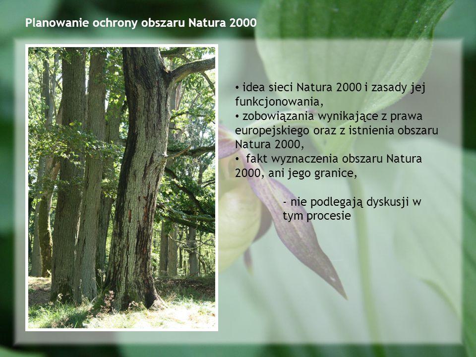 Planowanie ochrony obszaru Natura 2000 idea sieci Natura 2000 i zasady jej funkcjonowania, zobowiązania wynikające z prawa europejskiego oraz z istnienia obszaru Natura 2000, fakt wyznaczenia obszaru Natura 2000, ani jego granice, - nie podlegają dyskusji w tym procesie