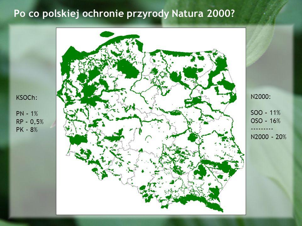 Po co polskiej ochronie przyrody Natura 2000.