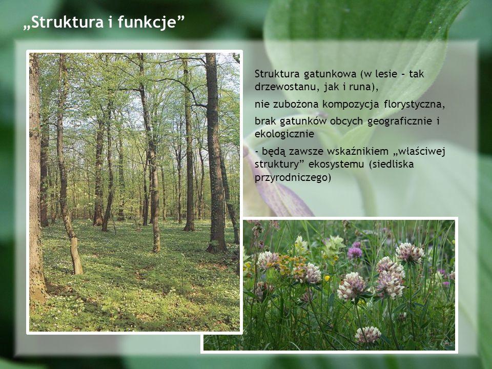Struktura gatunkowa (w lesie – tak drzewostanu, jak i runa), nie zubożona kompozycja florystyczna, brak gatunków obcych geograficznie i ekologicznie - będą zawsze wskaźnikiem właściwej struktury ekosystemu (siedliska przyrodniczego)