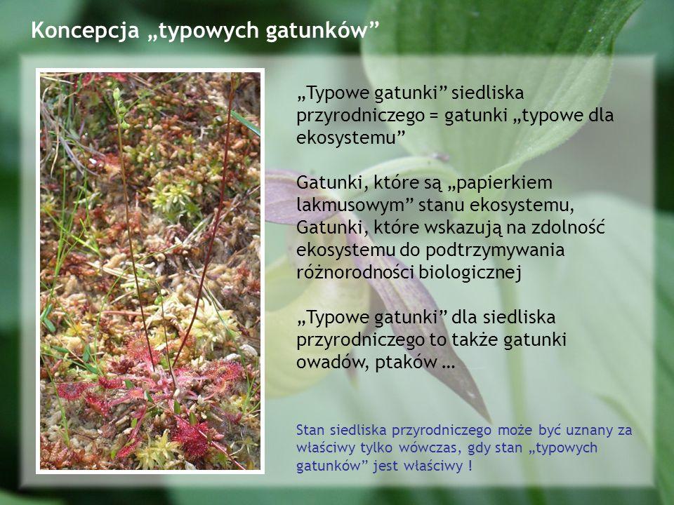 Koncepcja typowych gatunków Typowe gatunki siedliska przyrodniczego = gatunki typowe dla ekosystemu Gatunki, które są papierkiem lakmusowym stanu ekosystemu, Gatunki, które wskazują na zdolność ekosystemu do podtrzymywania różnorodności biologicznej Typowe gatunki dla siedliska przyrodniczego to także gatunki owadów, ptaków … Stan siedliska przyrodniczego może być uznany za właściwy tylko wówczas, gdy stan typowych gatunków jest właściwy !