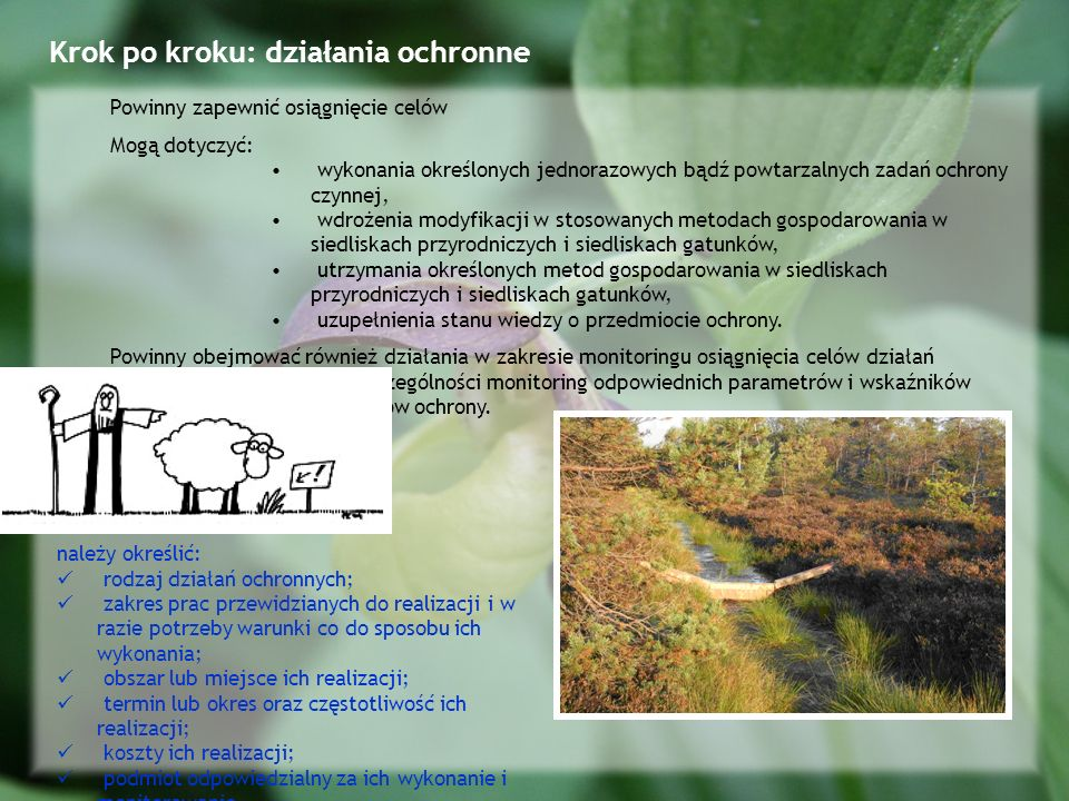 Krok po kroku: działania ochronne Powinny zapewnić osiągnięcie celów Mogą dotyczyć: wykonania określonych jednorazowych bądź powtarzalnych zadań ochrony czynnej, wdrożenia modyfikacji w stosowanych metodach gospodarowania w siedliskach przyrodniczych i siedliskach gatunków, utrzymania określonych metod gospodarowania w siedliskach przyrodniczych i siedliskach gatunków, uzupełnienia stanu wiedzy o przedmiocie ochrony.