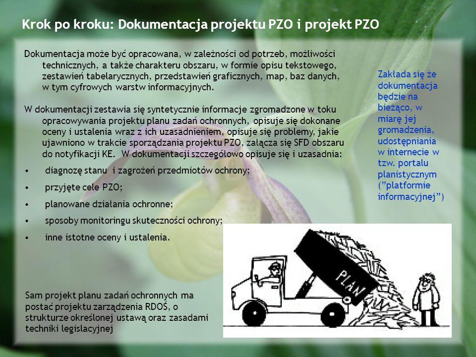 Krok po kroku: Dokumentacja projektu PZO i projekt PZO Dokumentacja może być opracowana, w zależności od potrzeb, możliwości technicznych, a także charakteru obszaru, w formie opisu tekstowego, zestawień tabelarycznych, przedstawień graficznych, map, baz danych, w tym cyfrowych warstw informacyjnych.