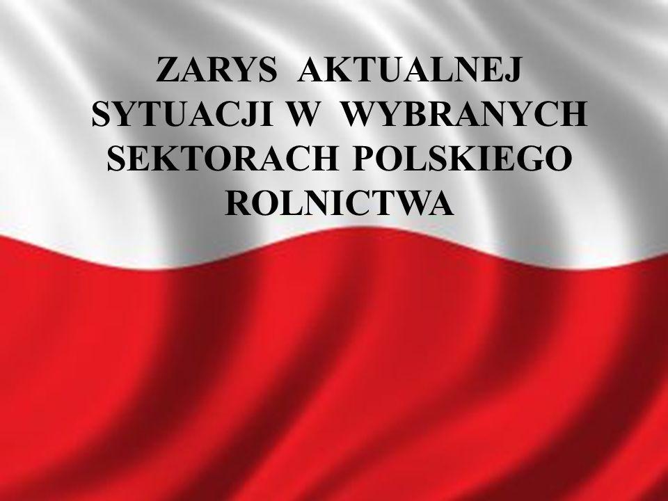199820002002200420062008* Powierzchnia upraw ziemniaków w Polsce (1 000 ton) 1 295.01 250.8803.4713.3597.2529.5* Produkcja ziemniaków w Polsce (1 000 ton) 25 948.724 232.415 523.913 731.58 982.010 004.9* *dane wstępne Źródło: Eurostat 2009 Powierzchnia upraw oraz wielkość produkcji ziemniaków w Polsce w latach 1998 - 2008