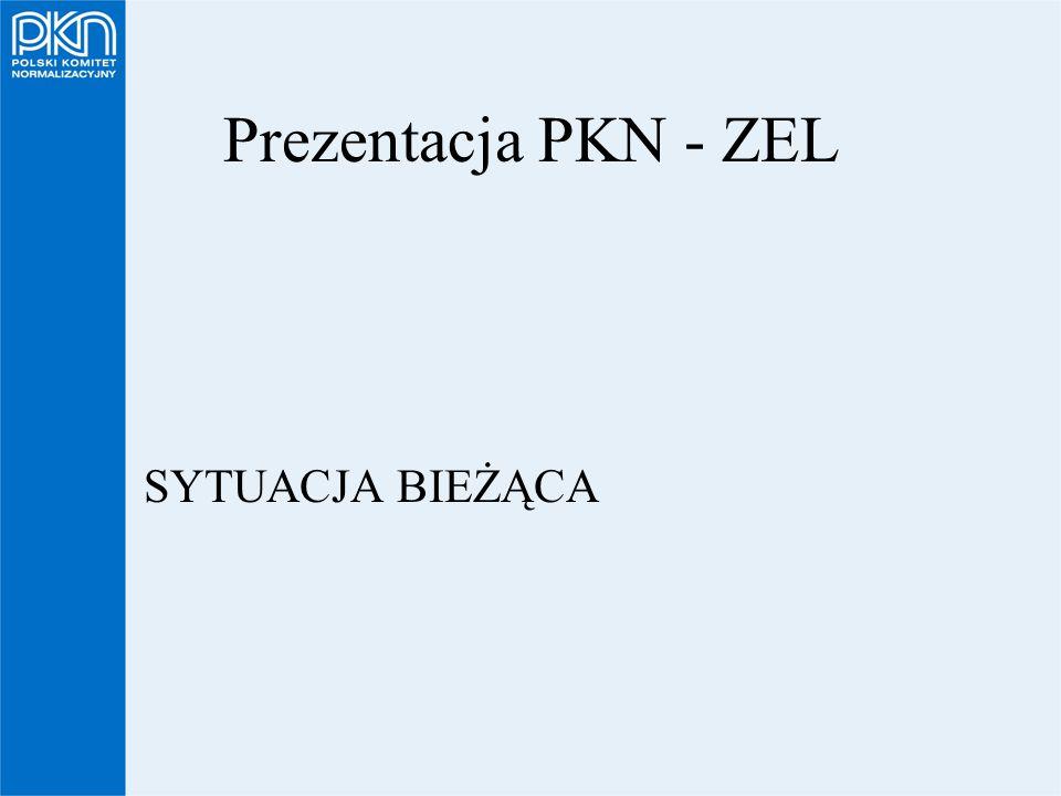 Prezentacja PKN - ZEL SYTUACJA BIEŻĄCA