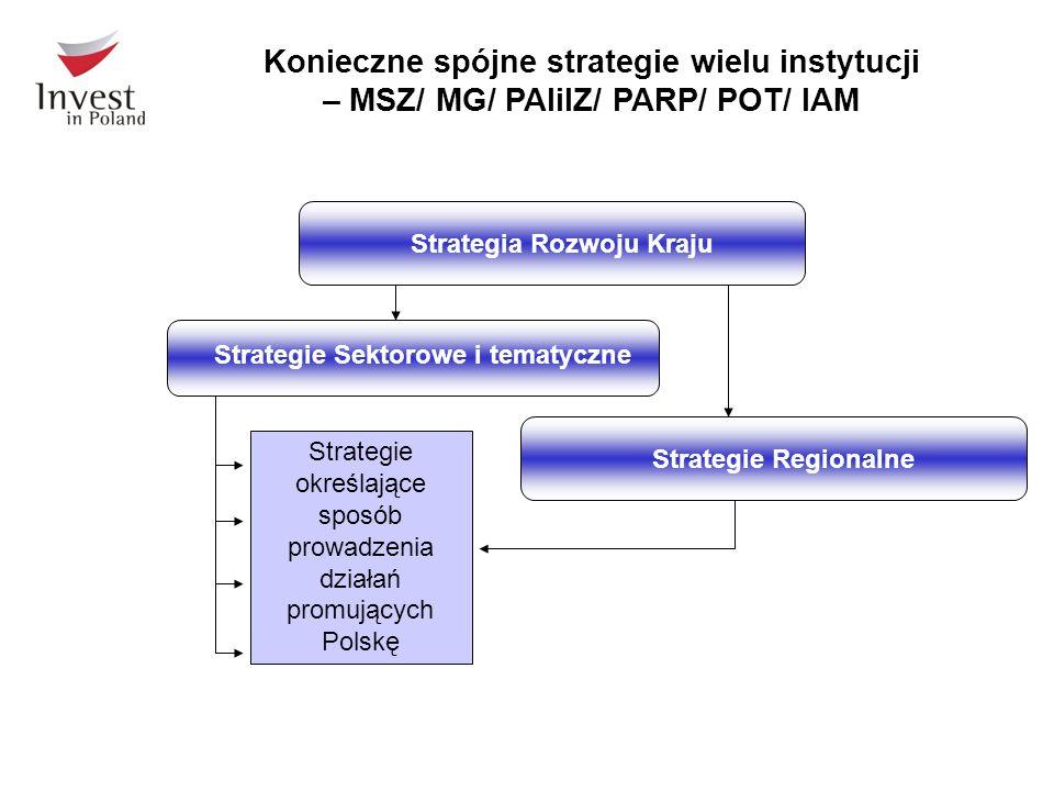 Konieczne spójne strategie wielu instytucji – MSZ/ MG/ PAIiIZ/ PARP/ POT/ IAM Strategia Rozwoju KrajuStrategie Regionalne Strategie Sektorowe i tematy