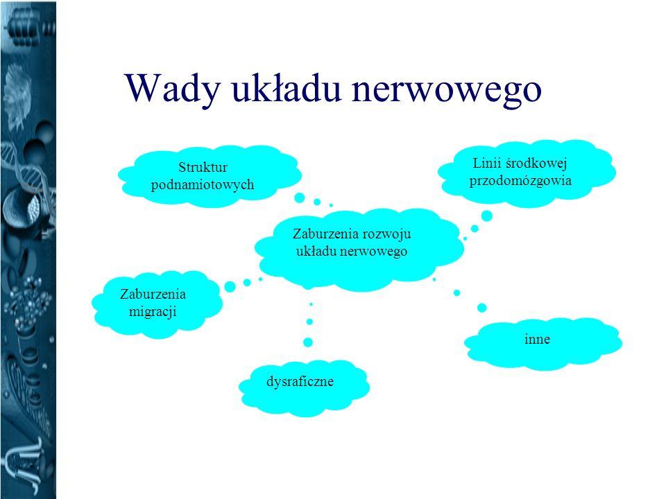 Wady układu nerwowego Zaburzenia migracji Zaburzenia rozwoju układu nerwowego dysraficzne Linii środkowej przodomózgowia Struktur podnamiotowych inne