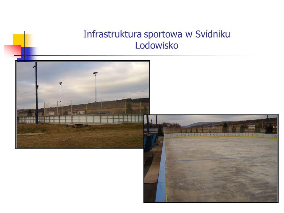 Infrastruktura sportowa w Svidniku Lodowisko
