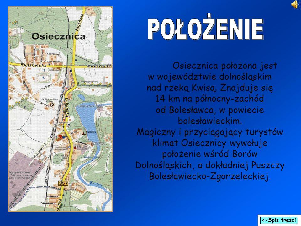 Osiecznica położona jest w województwie dolnośląskim nad rzeką Kwisą. Znajduje się 14 km na północny-zachód od Bolesławca, w powiecie bolesławieckim.