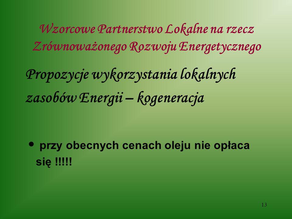 13 Wzorcowe Partnerstwo Lokalne na rzecz Zrównoważonego Rozwoju Energetycznego Propozycje wykorzystania lokalnych zasobów Energii – kogeneracja przy obecnych cenach oleju nie opłaca się !!!!!